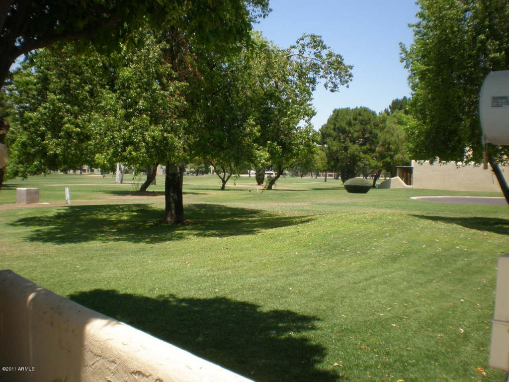 1009 N Villa Nueva Drive, Litchfield Park AZ 85340 - Photo 2